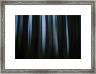 Abstract Trees And Fog Framed Print by Matt Dobson