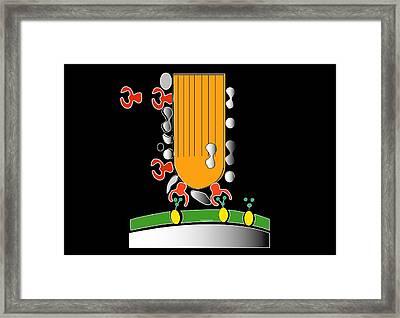 Acrosome Reaction, Artwork Framed Print by Francis Leroy, Biocosmos