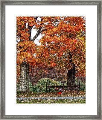 Adirondack Autumn Beauty Framed Print by Diane E Berry