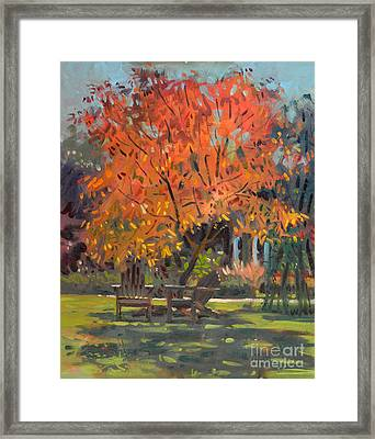 Adirondack Chairs Framed Print by Donald Maier
