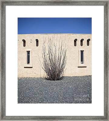 Adobe Building And Ocotillo Cactus Framed Print by Paul Edmondson