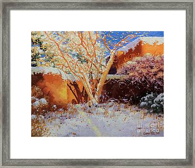Adobe Wall With Tree In Snow Framed Print by Gary Kim