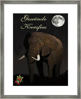 African Elephant Christmas In Africa Framed Print by Eric Kempson