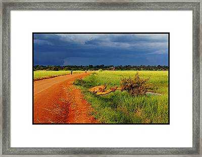 African Landscape Framed Print by Marian Barbu