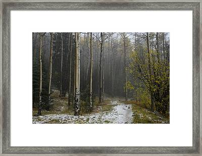 After A Hail Storm In The Santa Fe Framed Print by Raul Touzon