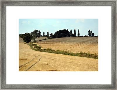 After The Harvest. Framed Print by Terence Davis