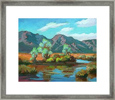After The Rain Framed Print by Diane McClary