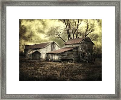 After The Storm Framed Print by Mary Timman