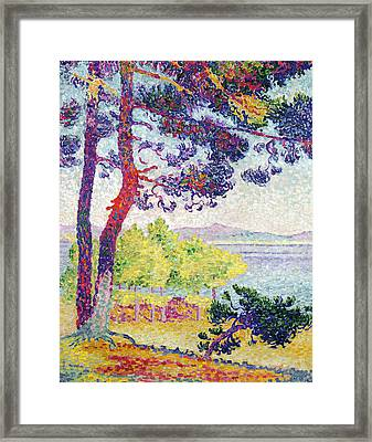 Afternoon At Pardigon Framed Print by Henri-Edmond Cross