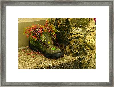Aged Enchantment Framed Print by Susan Camden