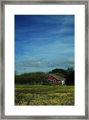 All That Yellow Framed Print by Laurie Search