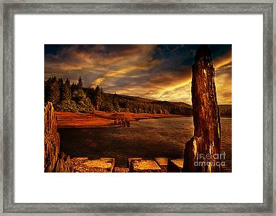 All That's Left Framed Print by Nigel Hatton