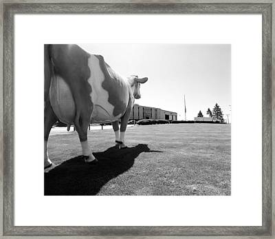 All We Have We Owe To Udders Framed Print by Jan Faul