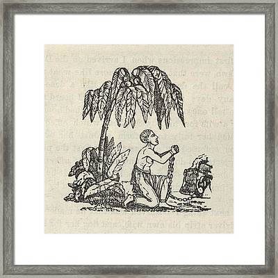 Am I Not A Man And A Brother The Framed Print by Everett