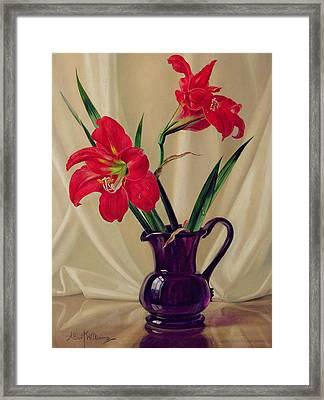 Amaryllis Lillies In A Dark Glass Jug Framed Print by Albert Williams