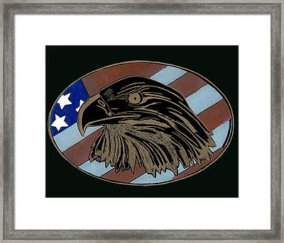 American Independence Day Framed Print by Jim Ross