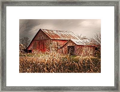 America's Small Farm Framed Print by Randall Branham