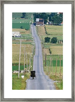 Amish Horse And Buggy On Country Road Framed Print by Jeremy Woodhouse
