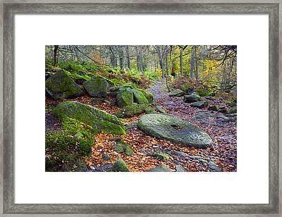 An Abandoned Millstone Along A Path In Framed Print by John Doornkamp