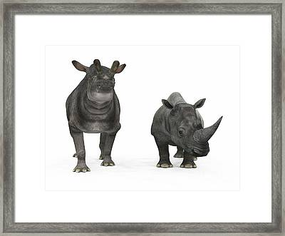 An Adult Brontotherium Compared Framed Print by Walter Myers