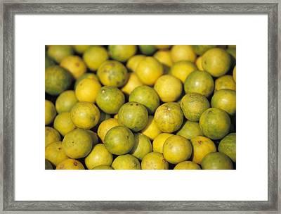An Enticing Display Of Lemons Framed Print by Jason Edwards