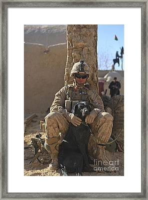 An Ied Detection Dog Keeps His Dog Framed Print by Stocktrek Images