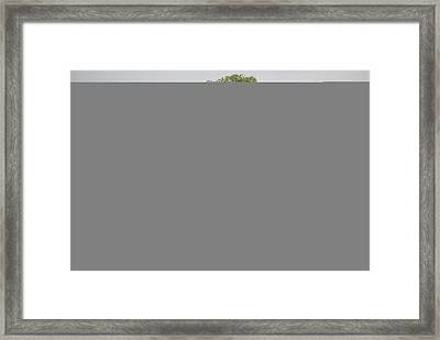 An Old Log Cabin Under A Large Tree Framed Print by Raymond Gehman