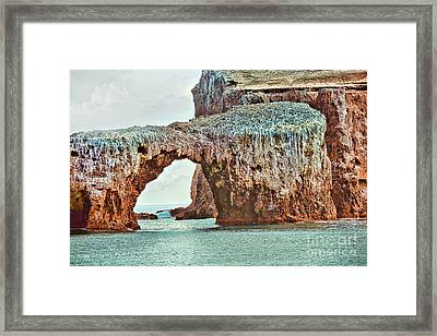 Anacapa Island 's Arch Rock Framed Print by Cheryl Young