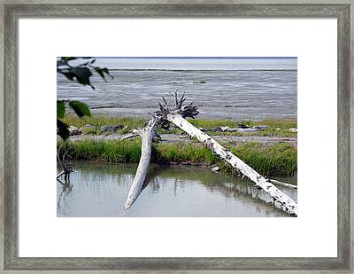 Anchorage In August Framed Print by Harvey Barrison