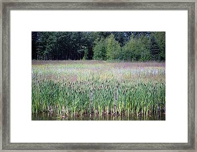 Anchorage In Summer Framed Print by Harvey Barrison