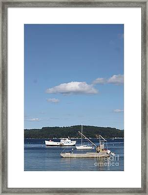 Anchored Together Framed Print by Terri Thompson