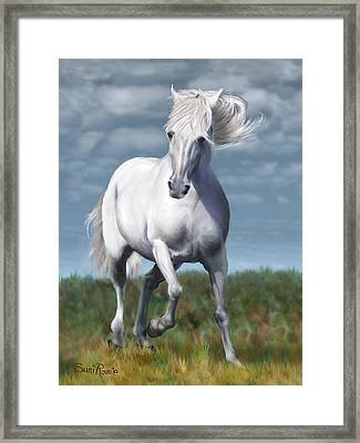Andalusian Freedom Framed Print by Suni Roveto