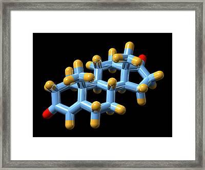 Androstenedione Hormone, Molecular Model Framed Print by Dr Mark J. Winter