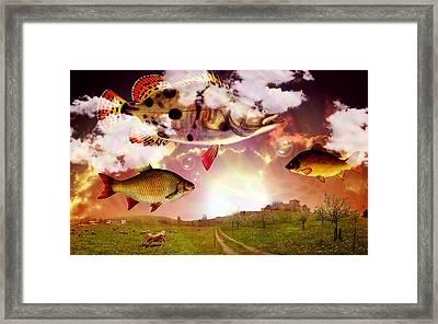 Angel Fish Framed Print by Mark Ashkenazi