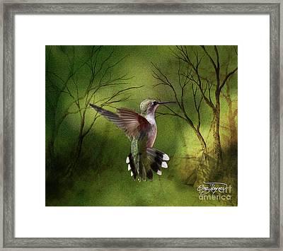 Angel Wings Framed Print by Cris Hayes