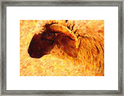 Angora Goat In Abstract Framed Print by Wingsdomain Art and Photography