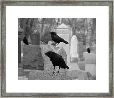 Angry Crow Framed Print by Gothicolors Donna Snyder