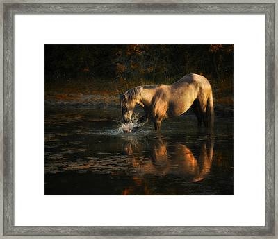 Another Morning At The Pond Framed Print by Ron  McGinnis