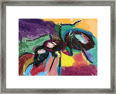 Ant Helen Framed Print by James Thomas