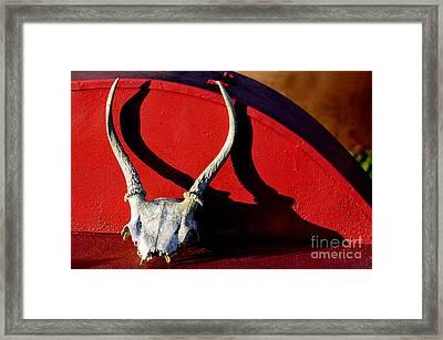 Antlers On Hay Baler Framed Print by Thomas R Fletcher
