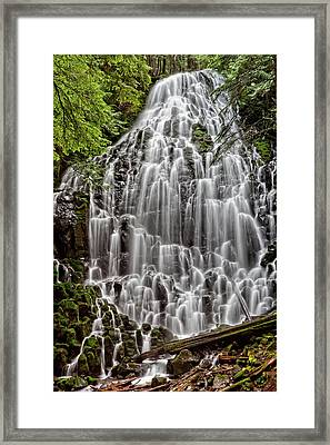 Apparition Framed Print by photos by Crow Carol Rukliss, Photographer