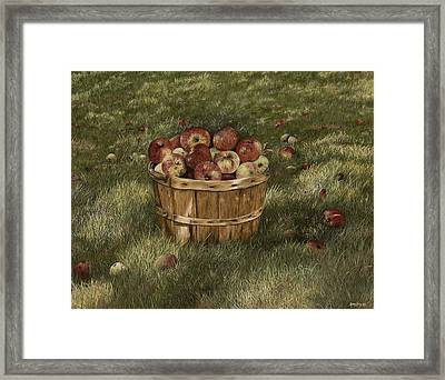 Apples In Basket Framed Print by Mary Ann King