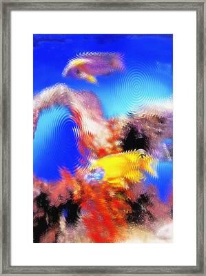 Aquarium Art 8 Framed Print by Steve Ohlsen