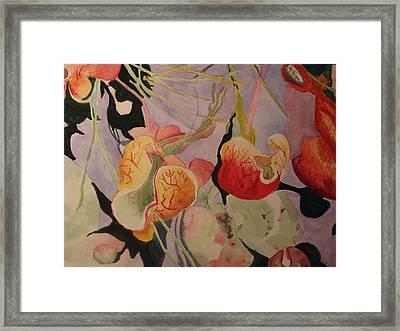 Aquatic Pitcher Plants Framed Print by Carol Marcus