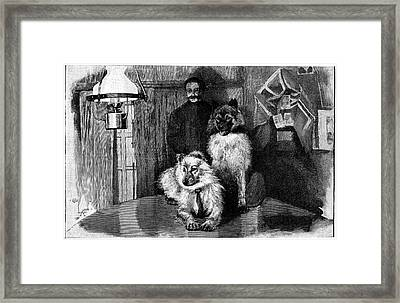 Arctic Explorer And Dogs, 19th Century Framed Print by