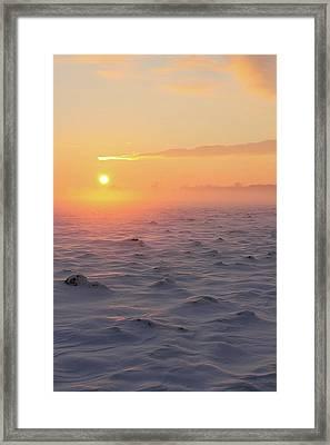Arctic Framed Print by P.folk / Photography