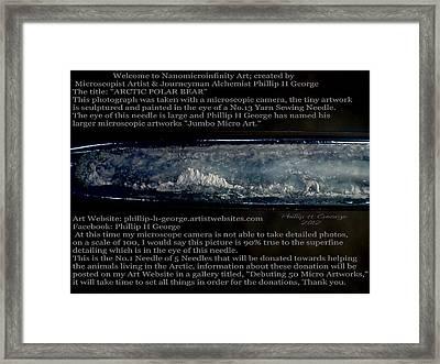 Arctic Polar Bear Debuting Photo Framed Print by Phillip H George