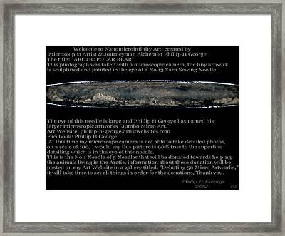 Arctic Polar Bear  Framed Print by Phillip H George