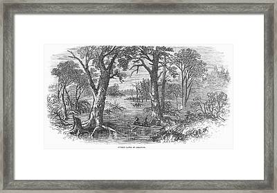 Arkansas: Sunken Lands Framed Print by Granger