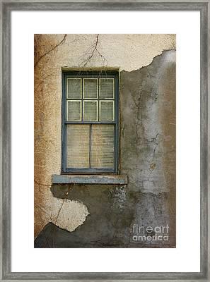 Art Of Decay Framed Print by Vicki Pelham